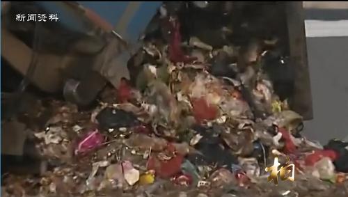 柏闻一见第24期:熊露璐:赔钱也要生产全降解塑料袋